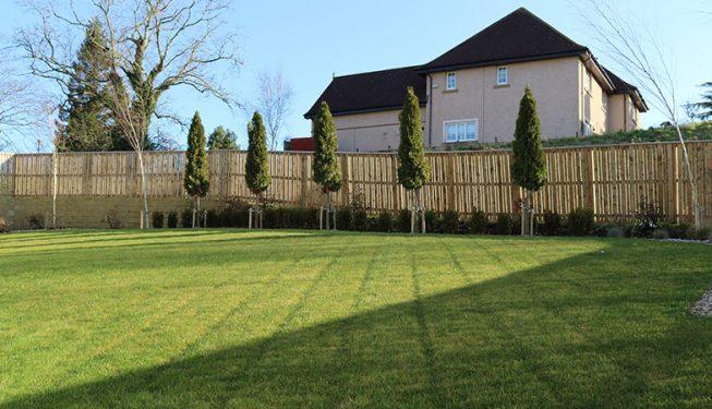 Quality turfed garden